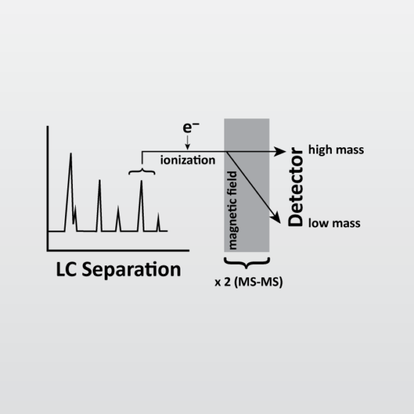 Liquid Chromatography with tandem mass spectrometry (LC-MS-MS) icon from EAG Laboratories