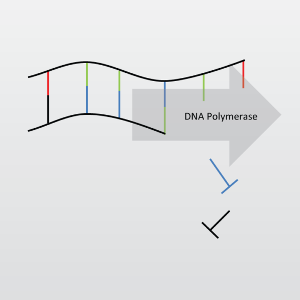 Icon for Polymerase Chain Reaction (PCR) Technique