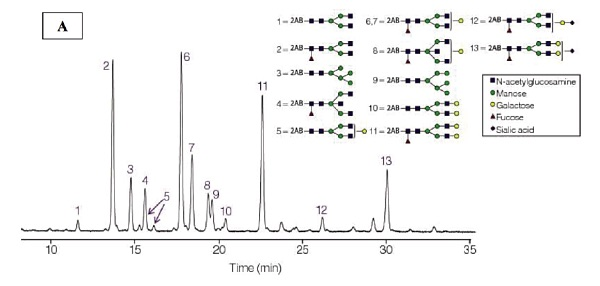 Figure 1. Representative chromatogram of the expected (A) and observed (B) N-glycan standard profile by HILIC-fluorescence detection.