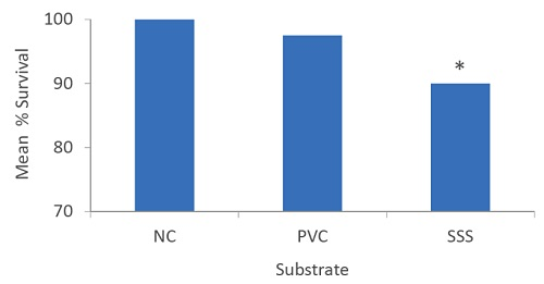 Figure 5. Mean percent survival of the negative control (NC), sectioned PVC pipe substrate (PVC), and bent stainless steel screen substrate (SSS) groups at test termination. Asterisk denotes significant difference from other groups.