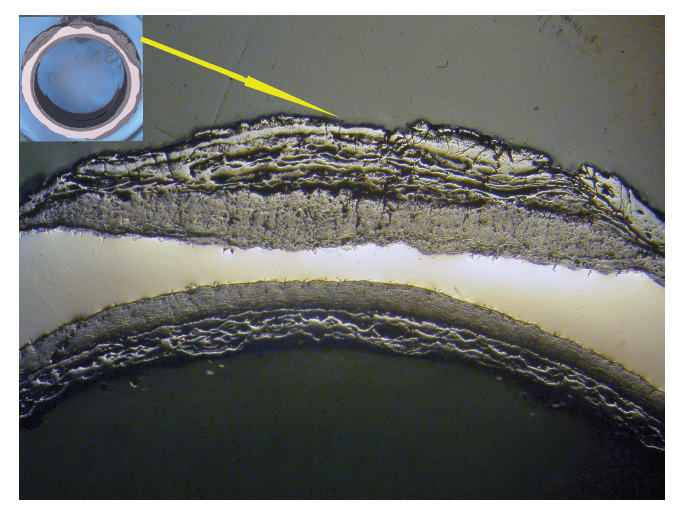 Cross-Section of a corroded stainless steel pipe showing reduced thickness of the base metal from contamination and oxidation 8X.