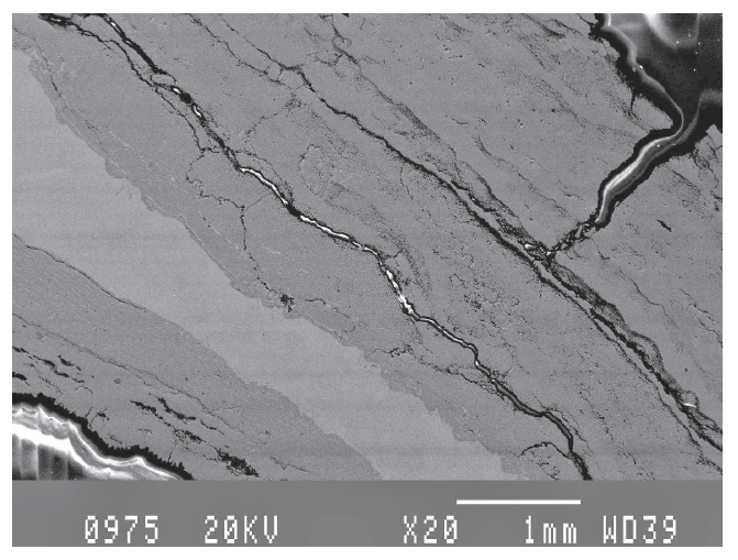 SEM micrograph obtained at the weld area, showing porosity, cracks and particles in the scale 20X.